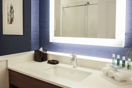 Bathroom Amenities | Holiday Inn Express & Suites Louisville Downtown