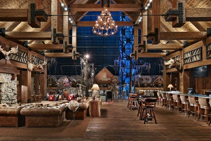 Featured Image | Big Cypress Lodge
