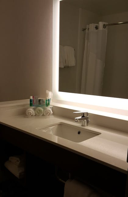 Bathroom | Holiday Inn Express & Suites Toledo West