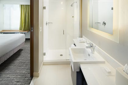 Bathroom | Springhill Suites by Marriott Carle Place Garden City