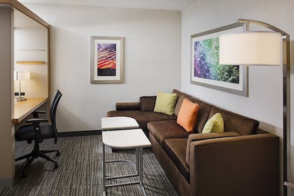 Guestroom   Springhill Suites by Marriott Carle Place Garden City