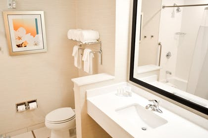 Bathroom | Fairfield Inn & Suites San Antonio Brooks City Base