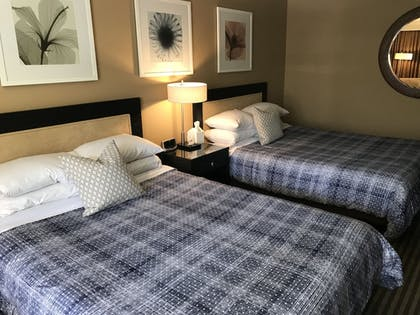 Guestroom | East Canyon Hotel and Spa