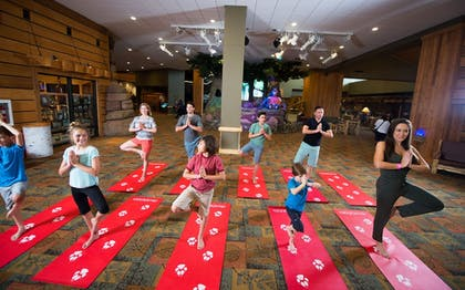 Yoga | Great Wolf Lodge Anaheim, CA