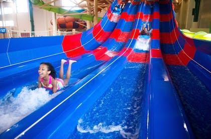 Waterslide | Great Wolf Lodge Anaheim, CA
