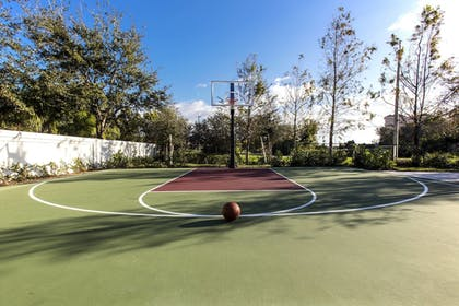 Sports Facility | TownePlace Suites by Marriott Miami Homestead