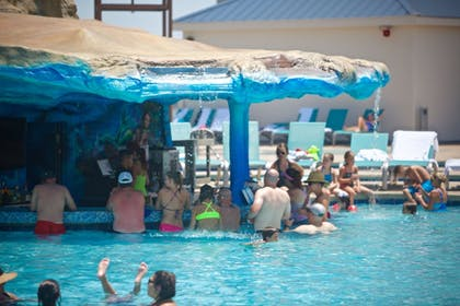 Swim-up Bar | Margaritaville Resort Biloxi
