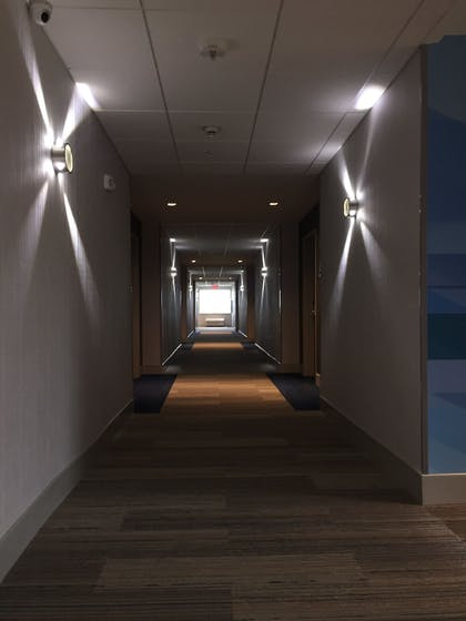 Hallway | Holiday Inn Express & Suites McKinney - Frisco East