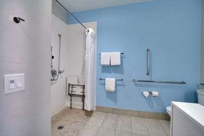 Bathroom | Holiday Inn Express & Suites Charleston NE Mt Pleasant US17
