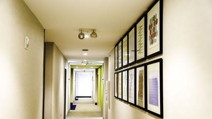 Hallway | Holiday Inn Express & Suites Kingston-Ulster