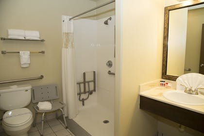 Bathroom | Lodge of La Mesa (A Quiet Hotel For Adults Only)