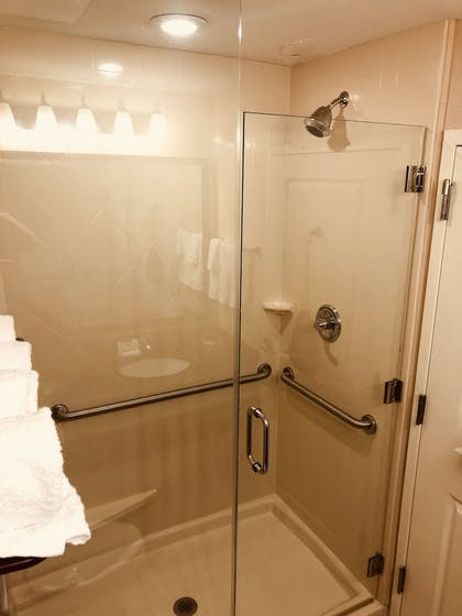 Bathroom Shower | Best Western Plus Hudson Hotel & Suites