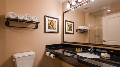 Bathroom | Best Western Plus Hudson Hotel & Suites