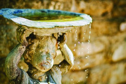 Fountain | The Collector Inn (Adults Only)