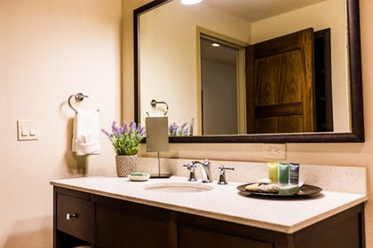 Bathroom Sink | The Lodge at Columbia Point