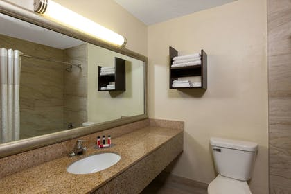 Bathroom | AmericInn by Wyndham La Crosse Riverfront-Conference Center