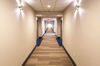 Hallway | Holiday Inn Express & Suites Houston IAH - Beltway 8