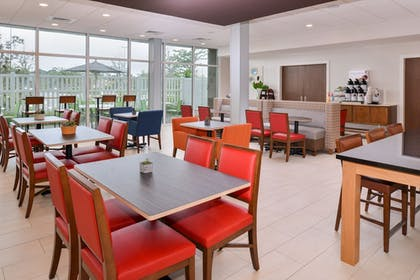 Restaurant | Holiday Inn Express & Suites St. Petersburg - Seminole Area