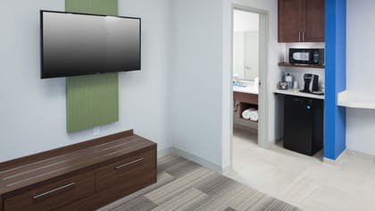 | Suite, Non Smoking | Holiday Inn Express & Suites Orlando at SeaWorld