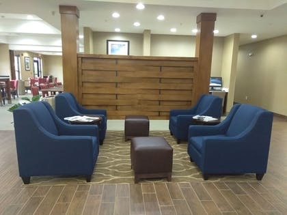 Lobby Sitting Area | Comfort Suites Greenville South