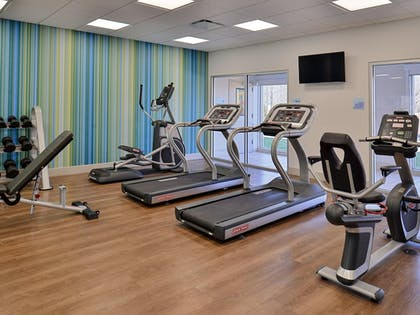 Fitness Facility | Holiday Inn Express & Suites Brighton South - US 23
