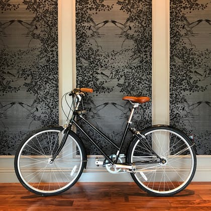 Bicycling | The Darcy Hotel