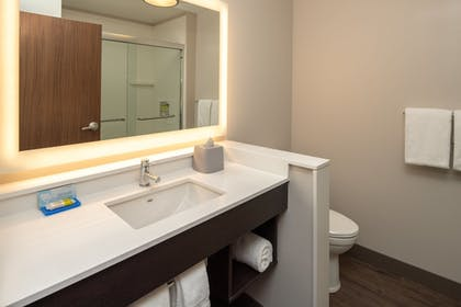 Bathroom | Holiday Inn Express & Suites Camas - Vancouver