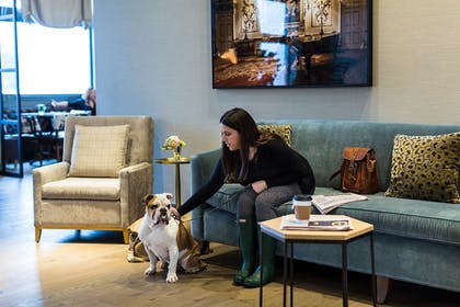 Pet-Friendly | Delamar West Hartford