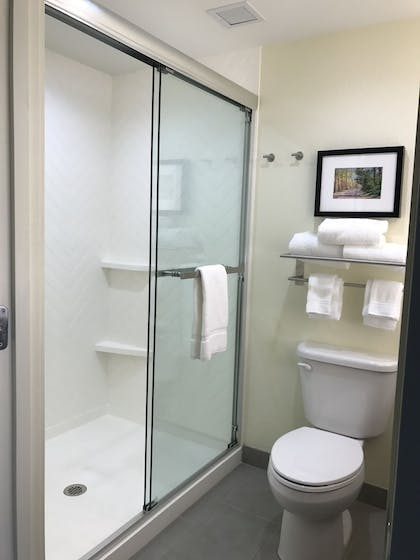 Bathroom | Holiday Inn Hotel & Suites-Asheville-Biltmore VLG Area