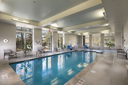 Pool | Holiday Inn Hotel & Suites-Asheville-Biltmore VLG Area