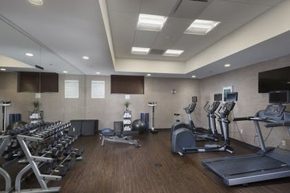 Fitness Facility | Holiday Inn Hotel & Suites-Asheville-Biltmore VLG Area