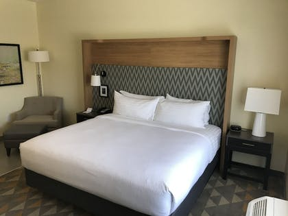 Guestroom | Holiday Inn Hotel & Suites-Asheville-Biltmore VLG Area
