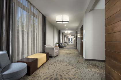 Meeting Facility | Holiday Inn Hotel & Suites-Asheville-Biltmore VLG Area