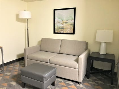 Living Area | Holiday Inn Hotel & Suites-Asheville-Biltmore VLG Area