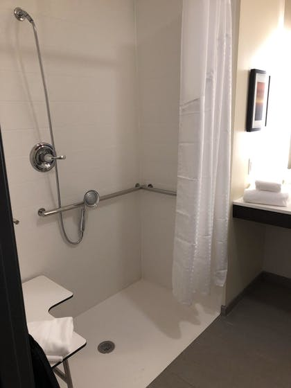 Bathroom | Holiday Inn Hotels and Suites Mount Pleasant
