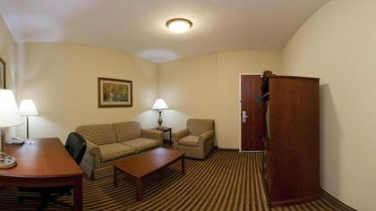 Living Area   Holiday Inn Express & Suites Waxahachie