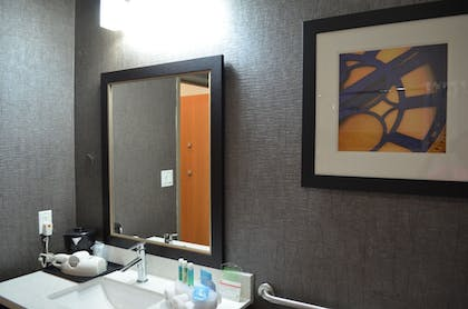 Bathroom | Holiday Inn Longview - North