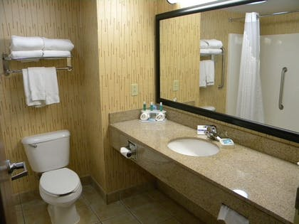 Bathroom | Holiday Inn Express Hotel & Suites Bowling Green