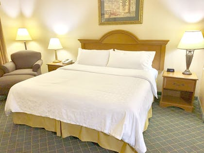 Guestroom   Holiday Inn Express & Suites Alice