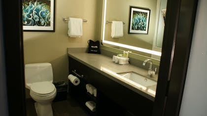 Bathroom | Holiday Inn Express Hotel & Suites Hollywood Walk of Fame