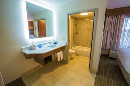 Bathroom | Holiday Inn Express Hotel & Suites Pasco-Tri Cities