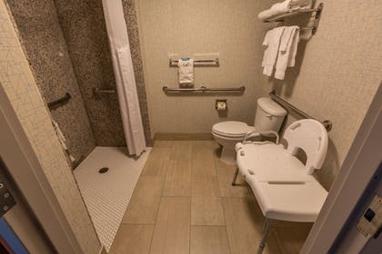 Bathroom Shower | Holiday Inn Express Hotel & Suites Pasco-Tri Cities