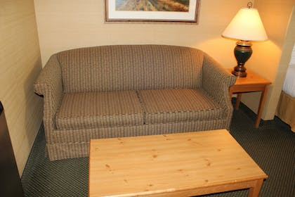 Living Area | Holiday Inn Express Hotel & Suites Warrenton