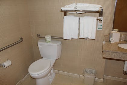 Bathroom | Holiday Inn Express Hotel & Suites Warrenton