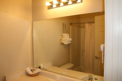 Bathroom | Carson City Plaza Hotel and Event Center