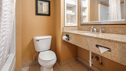 Bathroom | Best Western Windsor Inn & Suites