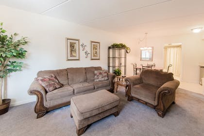 Living Area | Olde Gatlinburg Rentals