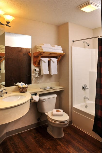 Bathroom | Stoney Creek Hotel & Conference Center Des Moines