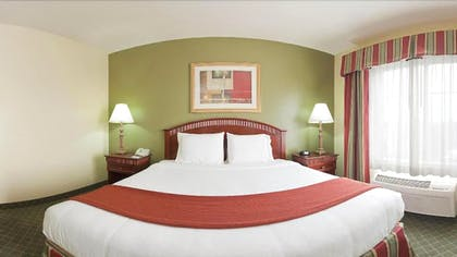 Guestroom | Holiday Inn Express Hotel & Suites Lexington-Downtown