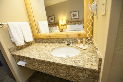 Bathroom Sink | Great Wolf Lodge Sandusky OH